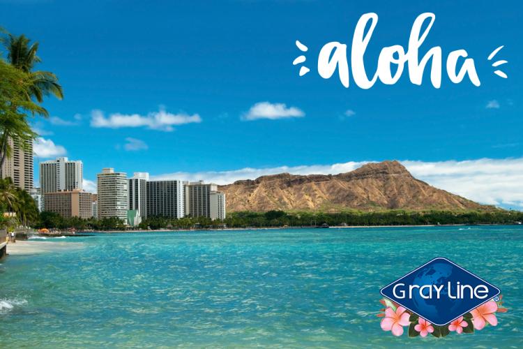 Blog_Aloha