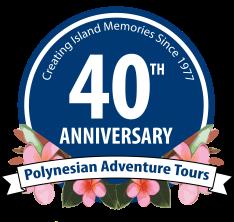 40th_Anniversary _Logo-Working